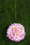 Blumenkugel Stockfoto