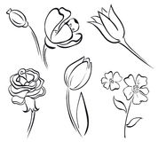 Blumenkunstzeile Lizenzfreies Stockbild