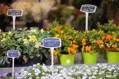 Blumenladen im Freien in Paris, Frankreich Lizenzfreies Stockbild