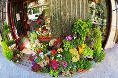 Blumenladen in Türspion lense Stockfotografie
