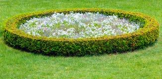 Blumenlandschaftsgestaltung Stockfotografie