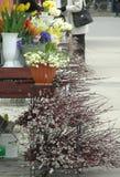 Blumenmarkt Stockbild