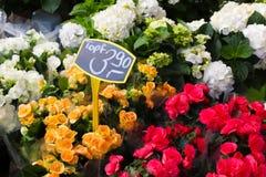 Blumenmarkt Stockfotografie