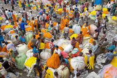Blumenmarkt, Kolkata, Indien Stockbilder