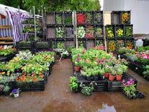 Blumenmarkt in Russland lizenzfreies stockbild