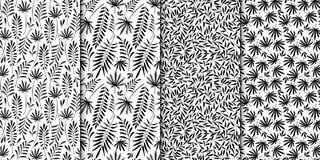 Blumenmodellserie Nahtloses Muster Schwarzweiss-Satz des stilvollen abstrakten Vektorbetriebsdekorativen Hintergrundes Lizenzfreie Stockfotografie
