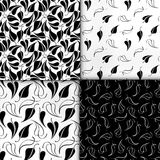 Blumenmodellserie Nahtloses Muster Schwarzweiss-Satz des stilvollen abstrakten Vektorbetriebsdekorativen Hintergrundes Stockfotografie