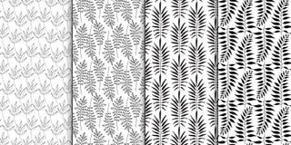 Blumenmodellserie Nahtloses Muster Schwarzweiss-Satz des stilvollen abstrakten Vektorbetriebsdekorativen Hintergrundes Stockbild