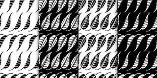 Blumenmodellserie Nahtloses Muster Schwarzweiss-Satz des stilvollen abstrakten Vektorbetriebsdekorativen Hintergrundes Lizenzfreies Stockfoto