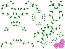 Blumenmonogramm Lizenzfreies Stockbild