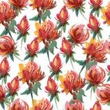 Blumenmuster des nahtlosen Aquarells Lizenzfreie Stockfotografie