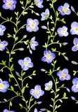 Blumenmuster des nahtlosen Aquarells auf schwarzem backgound Lizenzfreies Stockfoto