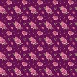 Blumenmuster des nahtlosen Handgezogenen Aquarells mit rosa Rosen vektor abbildung