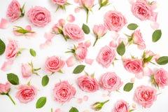 Blumenmuster gemacht von den rosa Rosen, grüne Blätter, Niederlassungen auf weißem Hintergrund Flache Lage, Draufsicht Gelbe Blum Stockfotografie