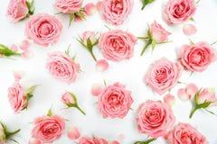 Blumenmuster gemacht von den rosa Rosen, grüne Blätter, Niederlassungen auf weißem Hintergrund Flache Lage, Draufsicht Gelbe Blum Stockbilder