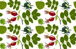 Blumenmuster mit Blättern, Hagebutte und Wanzen Vektorillustration, transparenter Hintergrund lizenzfreie abbildung