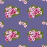 Blumenmuster mit Blumenstrauß des Plumeria Stockbild