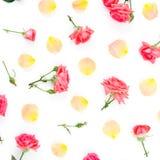 Blumenmuster mit Rosenblumen und -blumenblättern auf weißem Hintergrund Flache Lage, Draufsicht stockbilder