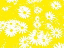 Blumenmuster mit weißem Gänseblümchen blüht auf gelbem Hintergrund lizenzfreie stockfotos