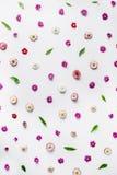 Blumenmuster-Tapete Lokalisiert auf Weiß Lizenzfreie Stockbilder