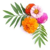 Blumenmusterdekoration Stockbild