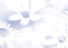 Blumenmusterhintergrund Lizenzfreie Stockfotos