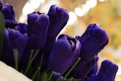 Blumennachahmung im Garten Stockbild