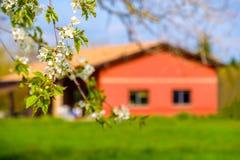 Blumenniederlassungs-Landhaus-Unschärfehintergrund-Frühjahrlandschaft Stockfotografie