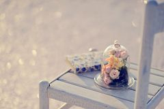 Blumennoch Lebensdauer Stockfoto
