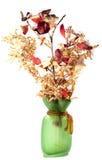 Blumennoch Lebensdauer stockbild