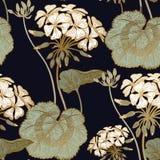 Blumenpelargonie Nahtloses Blumenmuster Stockfotos