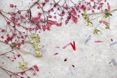 Blumenphantasiehintergrund Stockfotos