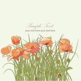 Blumenpostkarte Lizenzfreies Stockbild