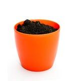 Blumenpotentiometer Stockfotografie
