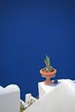 Blumenpotentiometer auf einem traditionellen griechischen Haus Lizenzfreie Stockfotos