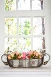 Blumenpotentiometer vor einem Fenster. Stockfotografie
