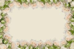Blumenrahmen Stockbilder