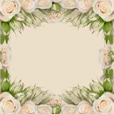 Blumenrahmen Lizenzfreies Stockbild