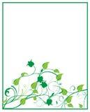 Blumenrahmen Lizenzfreie Stockfotos