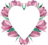 Blumenrahmen gemacht von den rosafarbenen Tulpen Sehen Sie meine anderen Arbeiten im Portfolio vektor abbildung