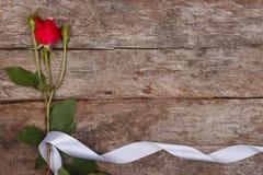 Blumenrahmen gemacht von der Rotrose Stockfotos