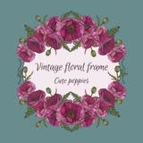 Blumenrahmen mit Blumensträußen von Mohnblumen Lizenzfreies Stockfoto