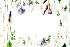 Blumenrahmen mit der purpurroter Irisblume, -Maiglöckchen, -niederlassungen, -blättern und -blumenblättern lokalisiert auf weißem Stockfotos