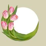 Blumenrahmen mit rosa Frühlingsblumen ENV 10 Stockfotos