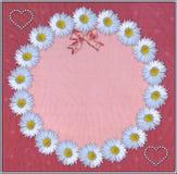 Blumenrahmen mit Tulle-Hintergrund Lizenzfreies Stockfoto