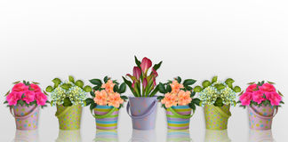 Blumenrand Blumen in den bunten Behältern Stockfotos