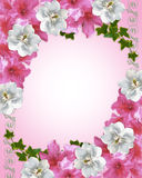 Blumenrandazaleen und Magnoliehochzeit invitat Lizenzfreie Stockfotos
