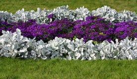 Blumenrasen-Entwurf stockbild