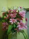 Blumenrosa und schönes stockbild