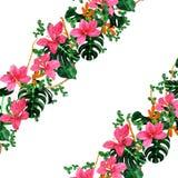 Blumenrosette Stockfotos